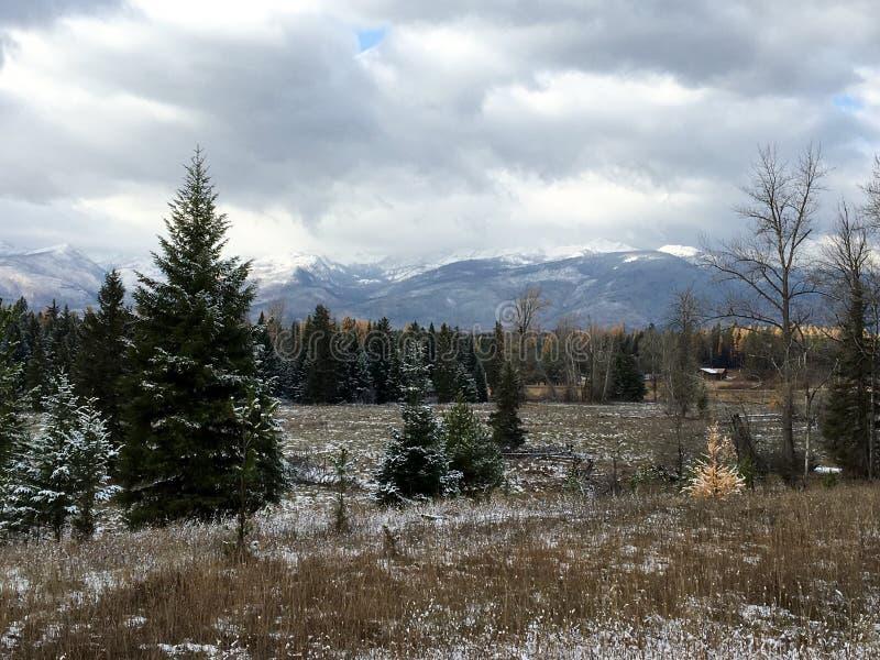 Montana landskap fotografering för bildbyråer