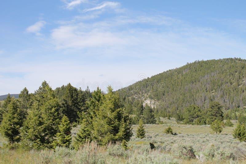 Montana Sky imágenes de archivo libres de regalías