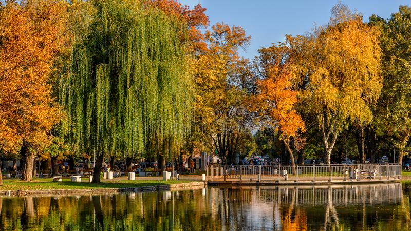 Montanesium park in the autumn. Montanesium park in Montana, Bulgaria, during autumn`s first days stock image