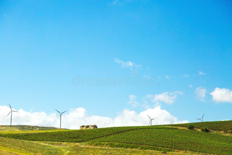 Montanhês do rolamento com vinhedo e turbinas em Sicília fotografia de stock royalty free