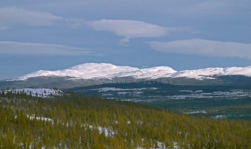 Montanha branca com neve do inverno fotografia de stock