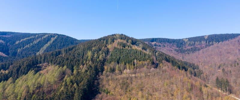 Montanha cônica nas montanhas de Harz cobertas com a floresta misturada imagem de stock