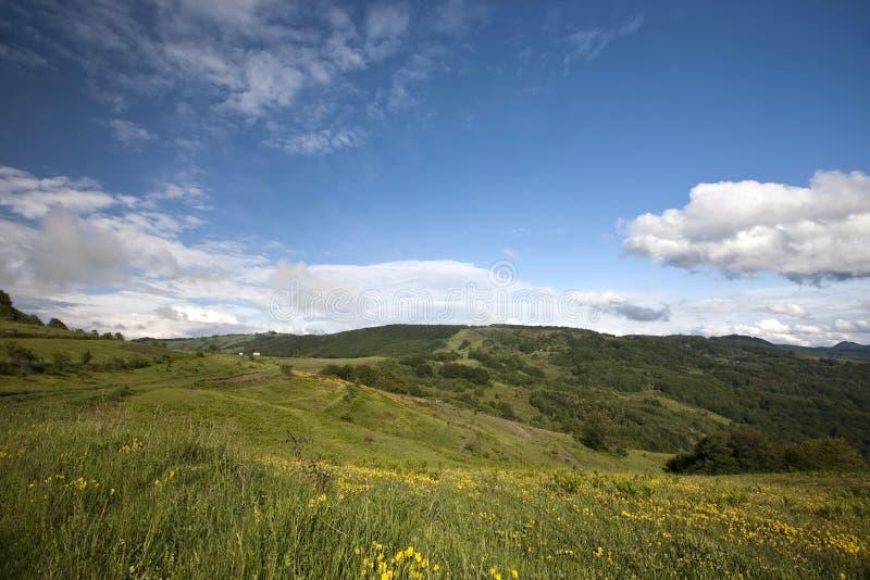 Montanha Carpathian imagem de stock royalty free