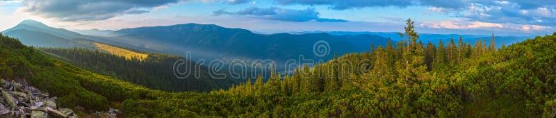 Montanha Carpathian do verão, Ucrânia imagens de stock royalty free