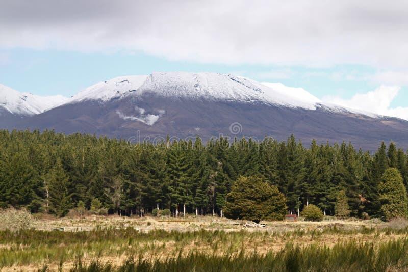 Montanha coberta de neve na paisagem da Nova Zelândia fotos de stock