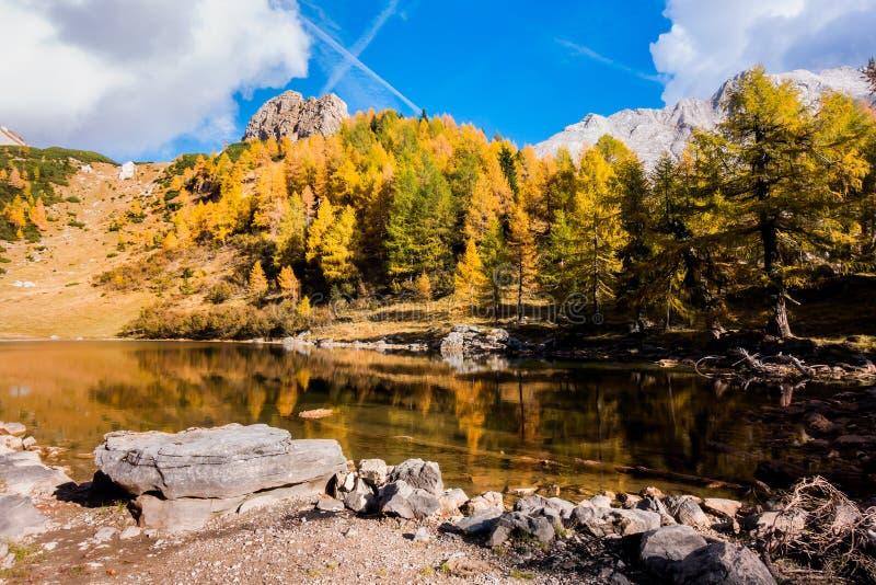 Montanha colorida da paisagem do outono Montanhas, lago e árvores colrful Itália, Friuli, lago de Bordaglia fotos de stock royalty free