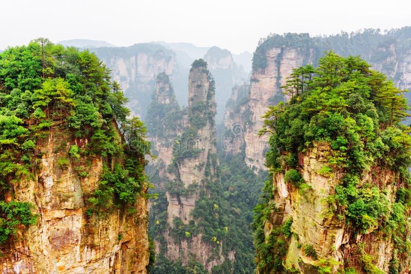 A montanha da aleluia do Avatar e outras rochas arborizadas, China imagem de stock