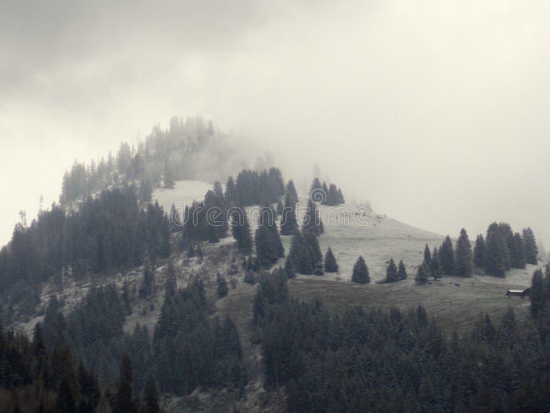 Montanha da névoa fotografia de stock royalty free