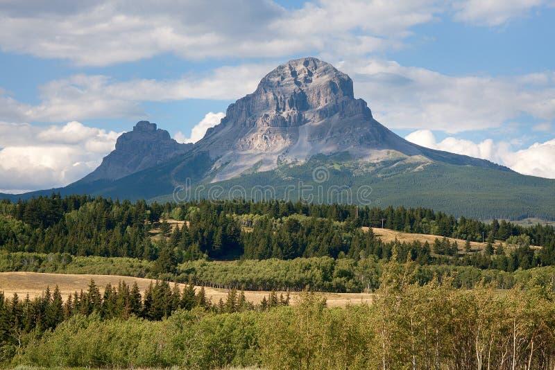 Montanha da passagem de Crowsnest no verão foto de stock