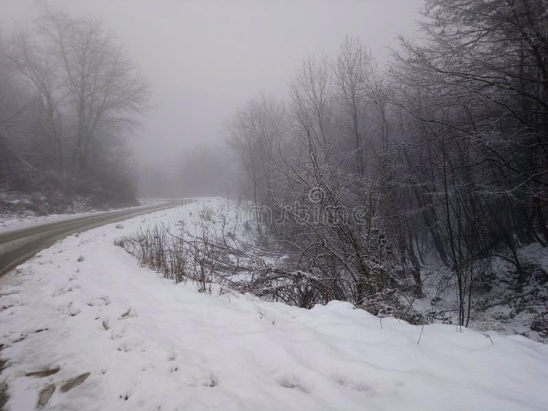 Montanha das árvores da estrada do gelo da neve fotos de stock royalty free