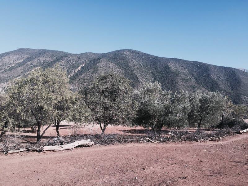 Montanha de Amzaham imagem de stock royalty free