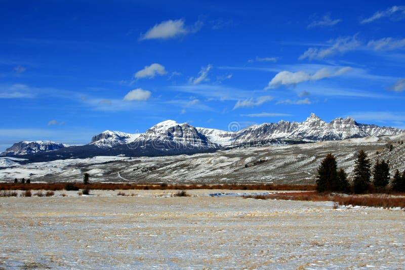 Montanha de Dubois Wyoming que cultiva a ideia do campo colhido da alfafa na frente da cordilheira de Absaroka foto de stock royalty free
