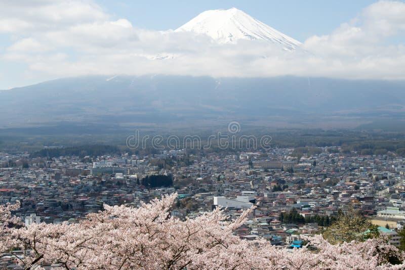 Montanha de Fuji em japão como o fundo com flor de sakura fotos de stock royalty free