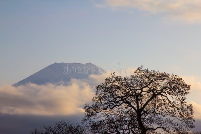 Montanha de Fuji Japão foto de stock royalty free