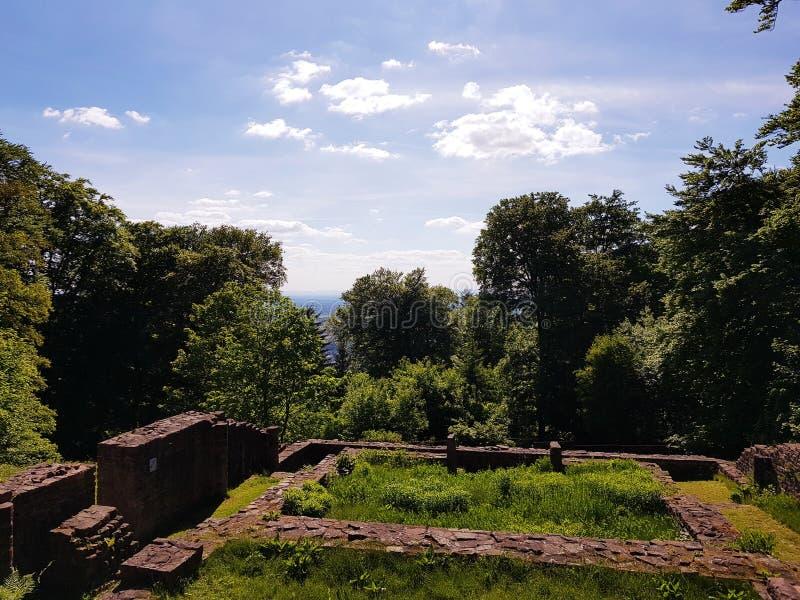 Montanha de Heidelberg fotos de stock