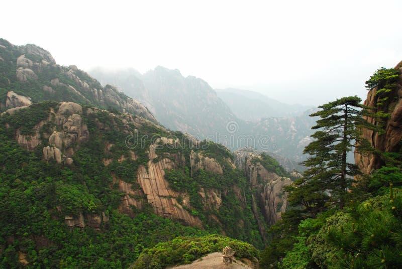 Montanha de Huangshan fotografia de stock royalty free