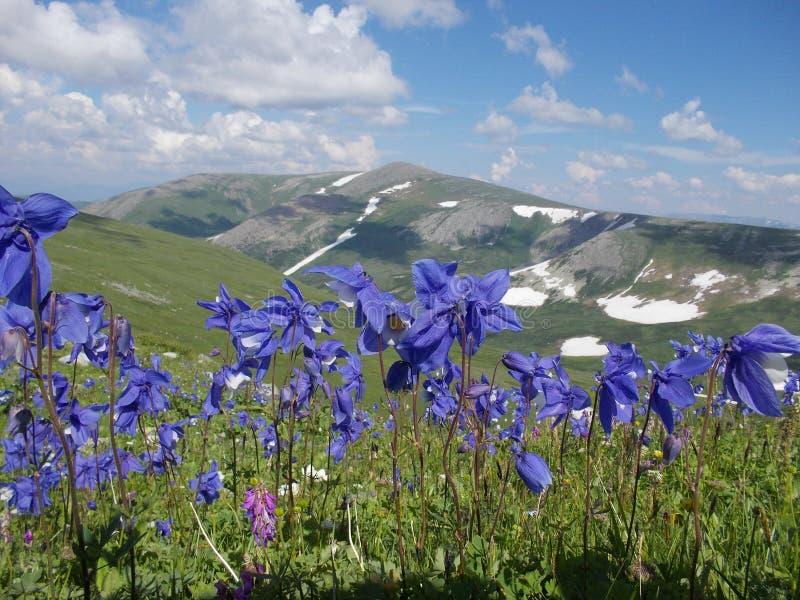 Montanha de Korolevsky Belok fotos de stock