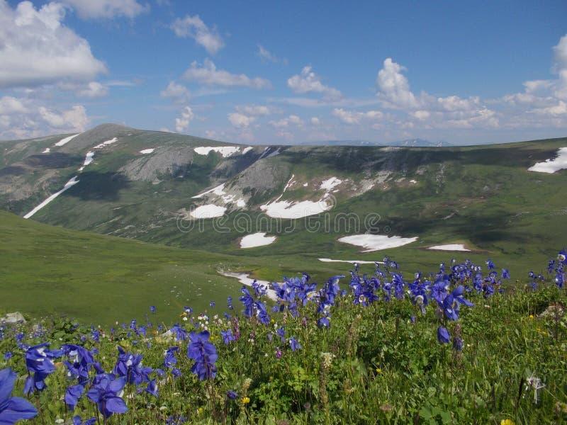 Montanha de Korolevsky Belok fotografia de stock royalty free