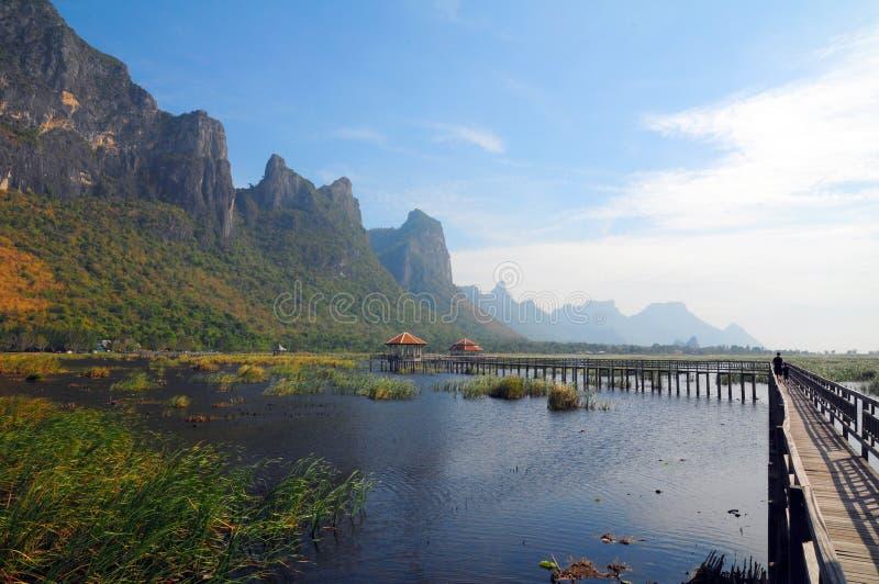 Montanha de madeira da lagoa da ponte com dia ensolarado imagem de stock