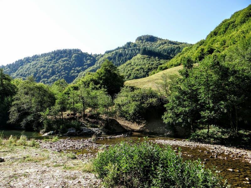 Montanha de Rodopa fotos de stock royalty free