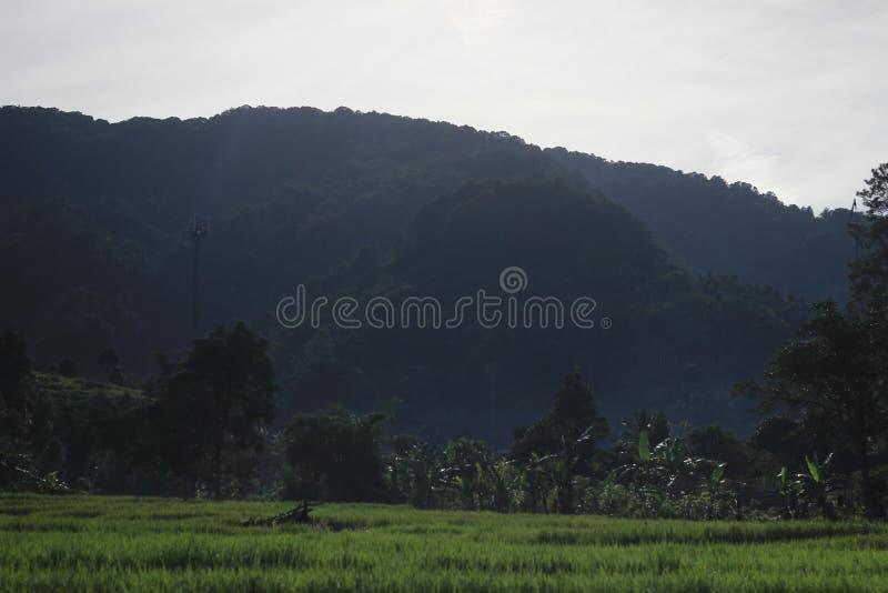 Montanha de Salak, java ocidental Indonésia, tom natural/neutro da manhã imagem de stock royalty free