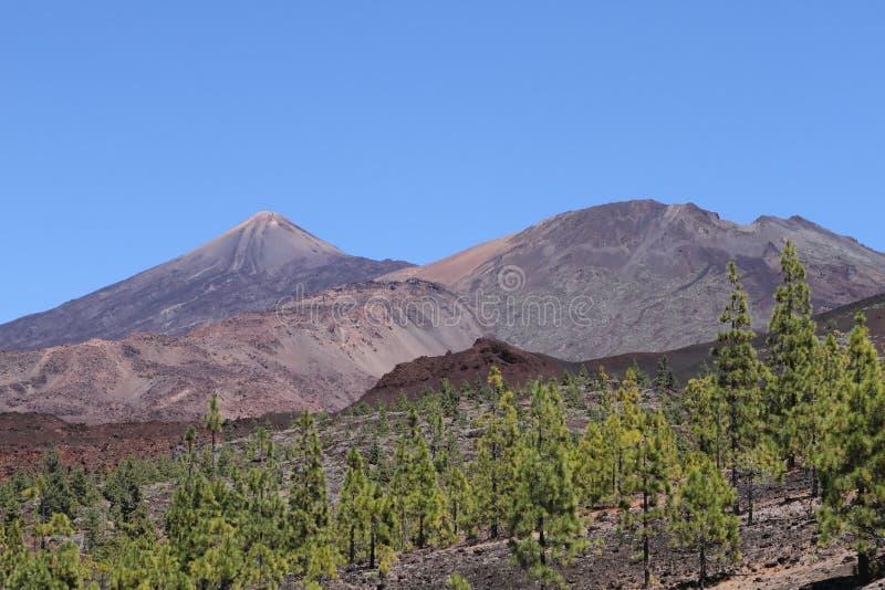 Montanha de Teide, Tenerife imagem de stock