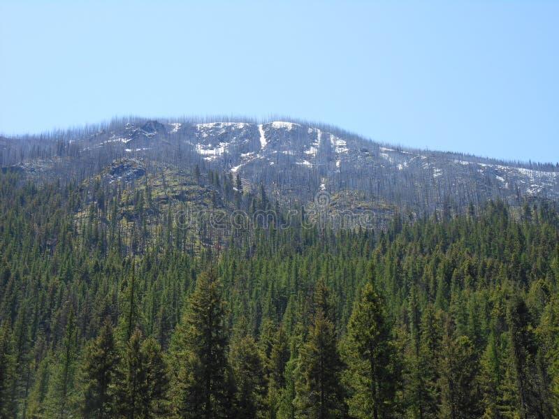 Montanha de Wa fotografia de stock royalty free