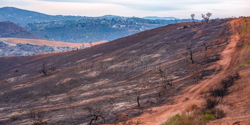 A montanha devastou pelo fogo lilás em Fallbrook CA imagens de stock royalty free
