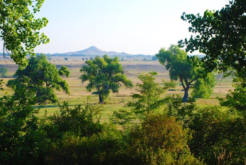 Montanha distante através de um campo fotografia de stock royalty free