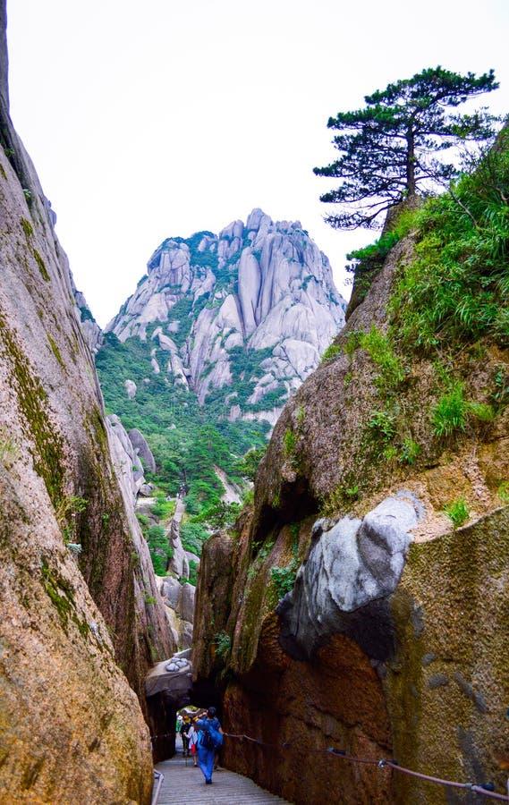 Montanha do amarelo de Huangshan da visita dos povos na província de Anhui China imagem de stock royalty free