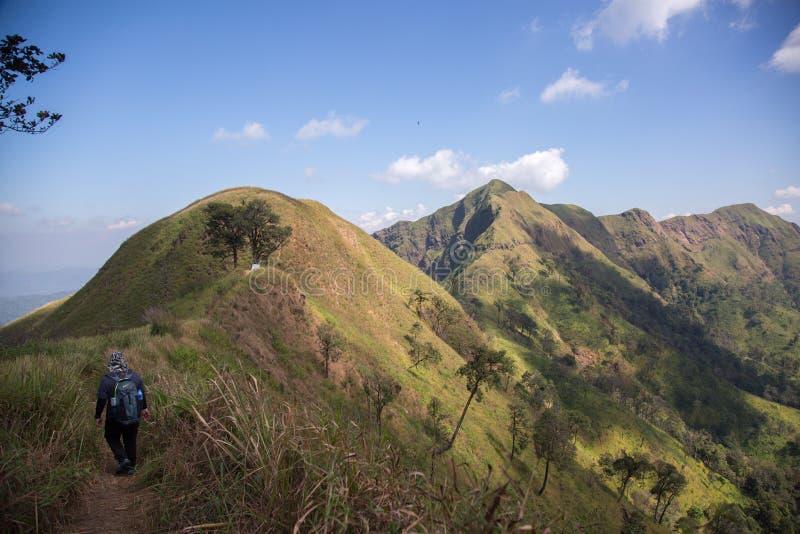 Montanha do elefante ou montanha da galáxia Pa nacional de Pha Phum da tanga fotos de stock royalty free