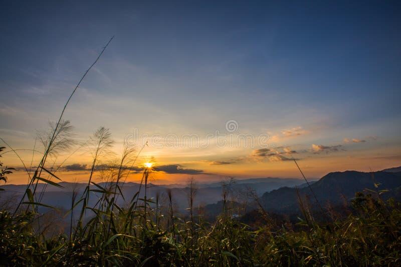 Montanha do elefante ou montanha da galáxia Pa nacional de Pha Phum da tanga fotos de stock