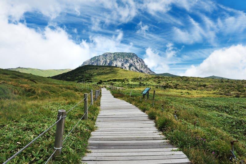 Montanha do halla de Jeju foto de stock