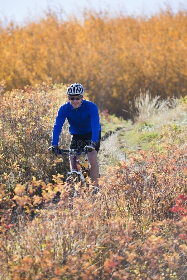 Montanha do homem que biking no outono fotografia de stock