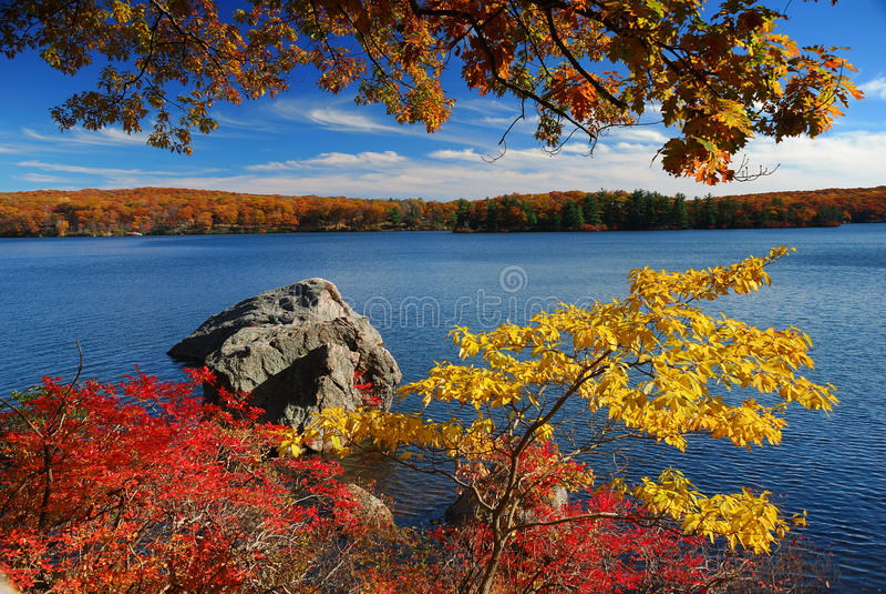Montanha do lago autumn com folhas coloridas fotos de stock