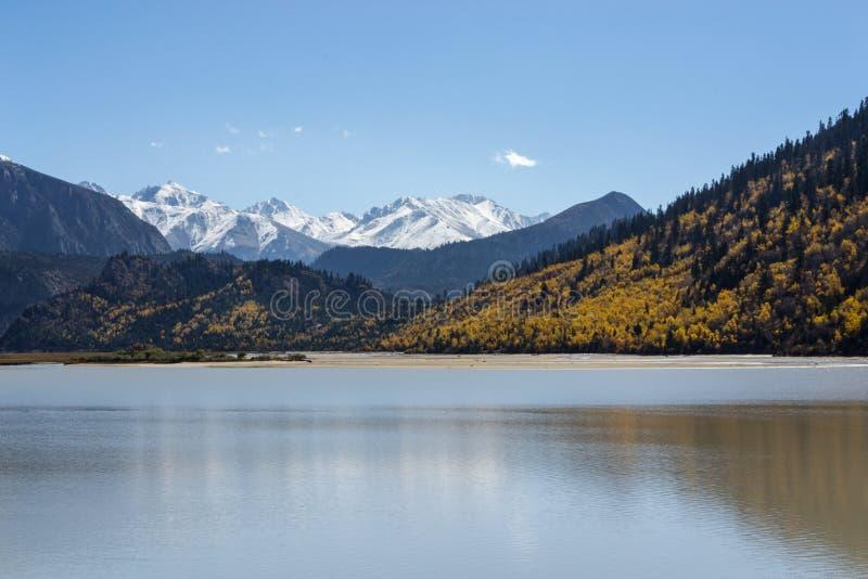 Montanha do lago e da neve imagem de stock