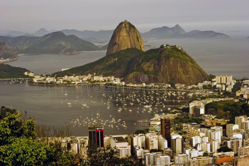montanha do sugarloaf em Rio de Janeiro fotografia de stock