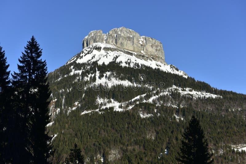 Montanha do vencido em Styria, Áustria, Europa imagem de stock