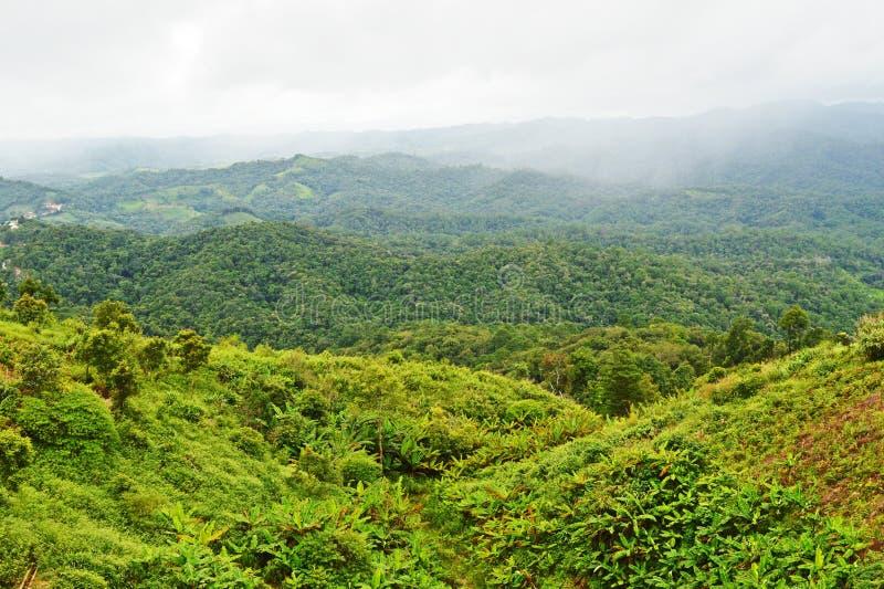 Montanha Doi Mae Daet imagens de stock