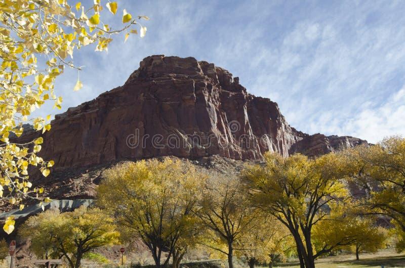 Montanha e árvores da rocha com folhas coloridas fotografia de stock
