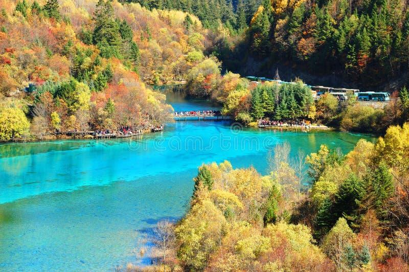 Montanha e lago da árvore do outono fotos de stock royalty free