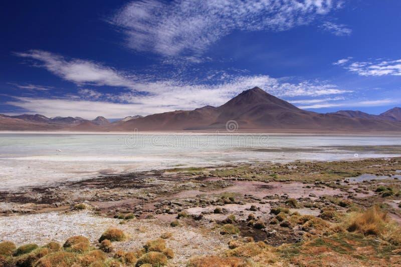 Montanha e lagoa em San Pedro de Atacama, o Chile imagens de stock