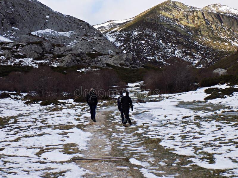 Montanha e neve foto de stock royalty free