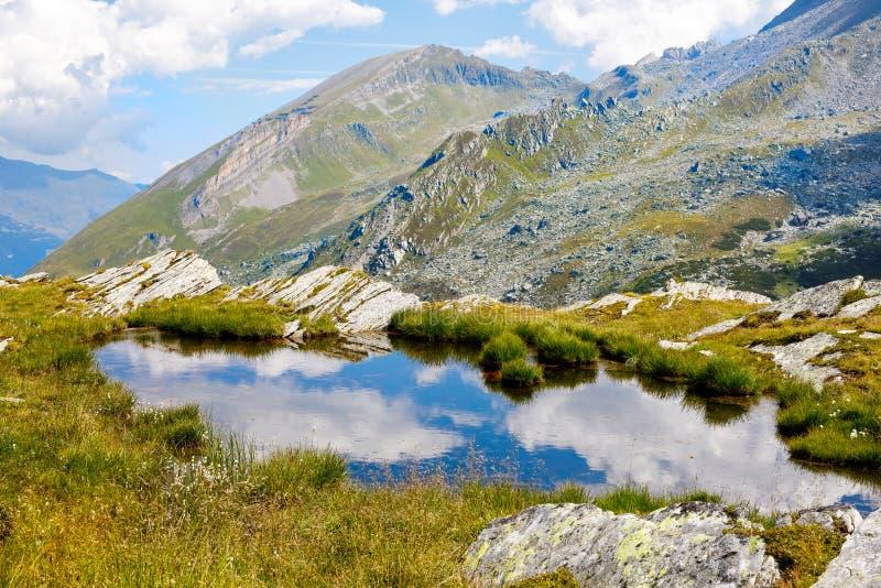 Montanha e paisagem da floresta em Tirol Áustria, região de Hintertux fotografia de stock royalty free