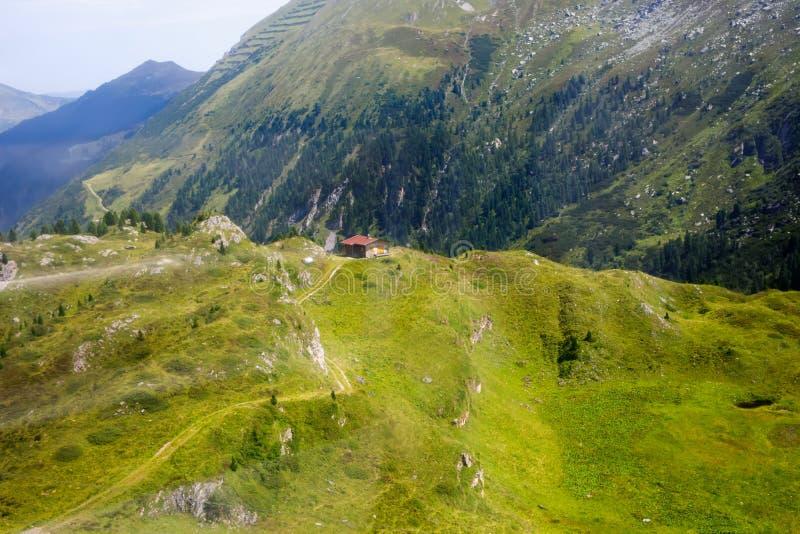 Montanha e paisagem da floresta em Tirol Áustria, região de Hintertux imagens de stock