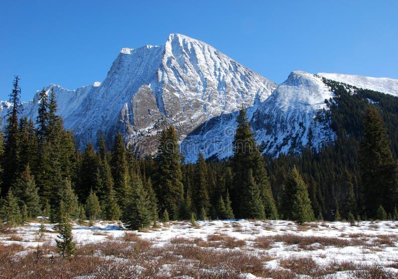 Montanha e prado da neve imagem de stock royalty free