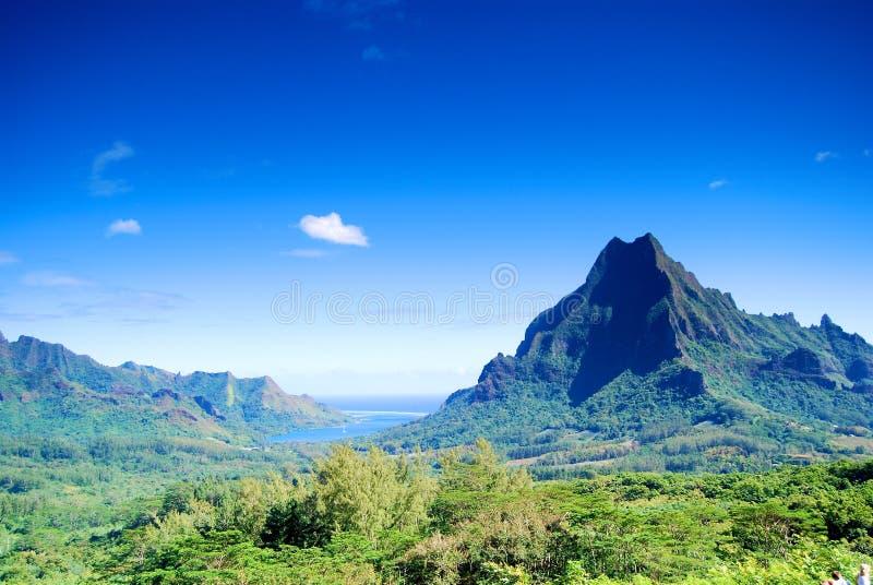 Montanha em Moorea fotos de stock
