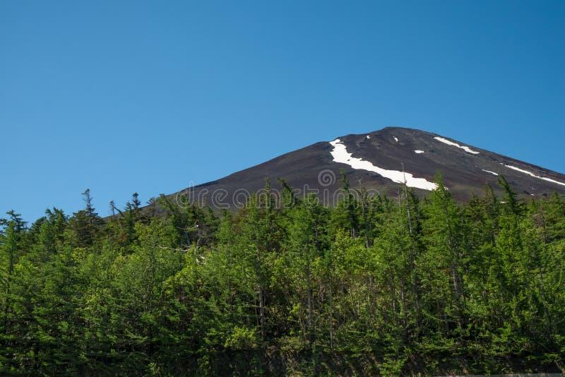 Montanha escura despida de Fuji no verão fotografia de stock royalty free