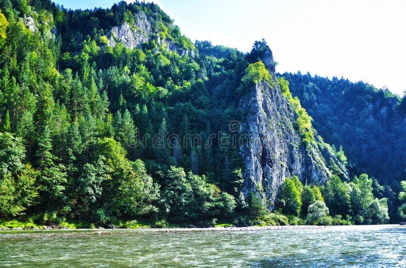 Montanha eslovaca ao lado do rio imagem de stock