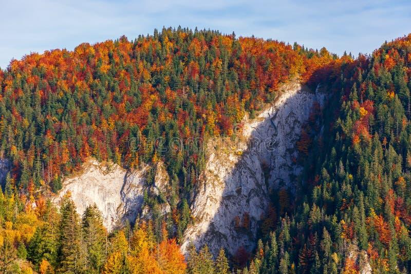 Montanha florestado com o penhasco no outono imagens de stock royalty free